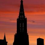 Münster vor Sonnenuntergang - Markus Will